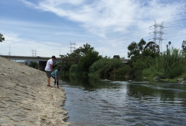 Gently rolling a seed bomb into the Los Angeles River